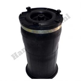 NEW Air spring rear